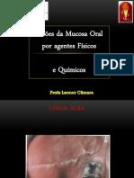 Lesões_da_Mucosa_Oral_por_agentes_fÃ-sicos_e_quÃ-micos  (1)