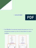 05_Biologia-glucidos_2 REVISADO.pptx