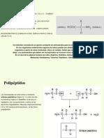07proteinas revisado.pptx