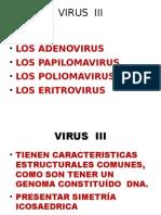 VIRUS  III.pptx