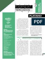 perfilplatano7 (1)