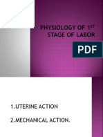 Physiology of 1st Stage of Labor