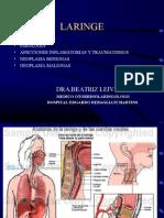 05) Patologias de Laringe