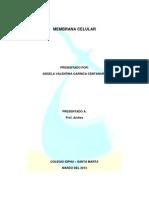 Membrna Celular