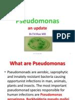 Pseudomonas  an  update