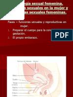 9.Fisilogía sexual femenina 9