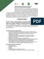 CONVOCATORIA evaluadores PESA CEE 2011.pdf