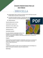Enfermedades Que Producen Las Bacterias.pptx