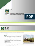 A regulação e o desenvolvimento da indústria dos biocombustíveis no Brasil