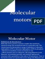 Molecular Motor