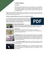 LA TECNOLOGIA Y EL MEDIO AMBIENTE.docx