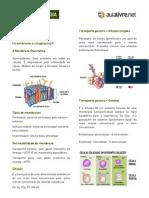 apostila-citologia.pdf