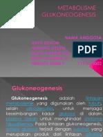 ppt mtbolisme glukoneogenesis