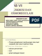 Ekskresi & Osmoregulasi Oleh Indra Gumay Yudha