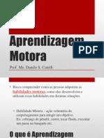 Aprendizagem Motora.pdf