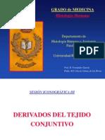 C. Derivados Del Conjuntivo