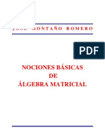 Nociones Basicas de Algebra Matricial