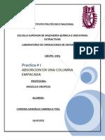 PRACTICA DE ABSORCION1 GRUPO 7IM3.docx