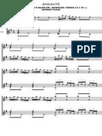 Andante Rv 532 Vivaldi