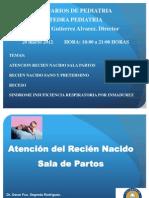 1 Atencic3b3n Del Recic3a9n Nacido Sala Partos