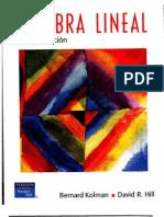 Algebra Lineal de Bernard Kolman