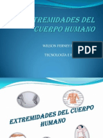 extremidadesdelcuerpohumano-100608184845-phpapp02