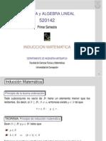 Algebra y Algebra Lineal Primer Semestre Induccion Matematica