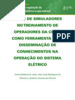 carlosrobertoleite_ousodesimuladores
