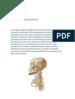 Como Se Realiza Un Ajuste Quiropractico en Cervicales