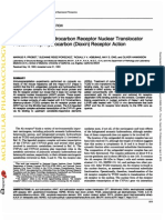 Role of the Aryl Hydrocarbon Receptor Nuclear Translocation