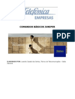 Comandos Juniper Networks (Atualizado).pdf