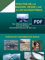 Los efectos de la contaminación desde las celulas a los ecosistemas.