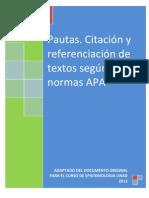 2-Instructivo_-_Pautas_Normas_APA_2013