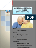 Final Monografia Adulto Mayor.