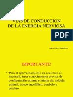 viasnerviosas-1215713033004759-9