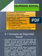 9seguridadsocial-101109100308-phpapp02
