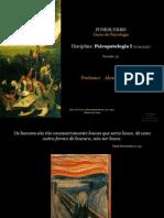 aula1-introduoaosconceitosdapsicopatologia-110207125407-phpapp02