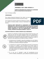 Directiva Nacional DN_001_2009_MTPE_2_11_1