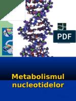 Metabolismul Ac.nucleici