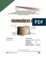 INFORME D PREPARACION DE BIOL.docx