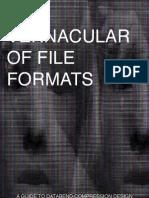 Lofi Rosa Menkman - A Vernacular of File Formats