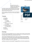 Duck - Wikipedia, The Free Encyclopedia