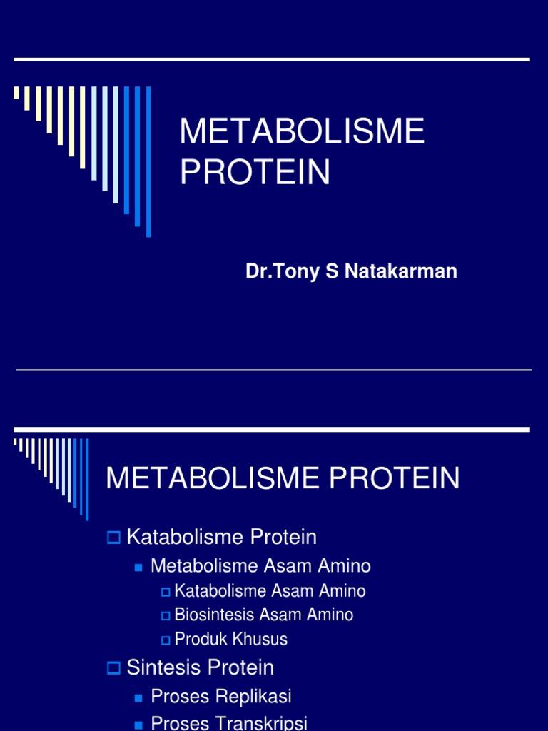 Metabolisme protein asam amino 12 (2).