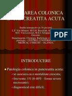 Afectarea Colonica in Pancreatita Acuta