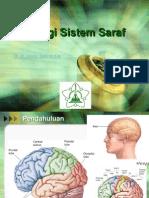 Fisiologi Sistem Saraf (Dr.imran, SpS) 2013
