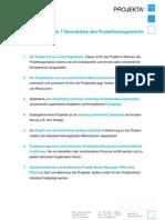 Die 7 Grundsaetze Des Projektmanagements