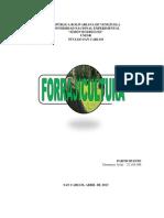 Forrajicultura (Trabajo Dormerys-unesr)