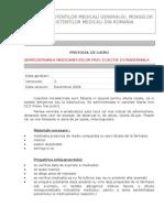 ADM. MEDICAMENTELOR PE CALE INTRADERMALAdoc.doc