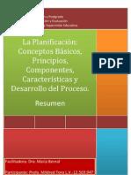 Resumen Planificacion Para Dra. Maria Bernal