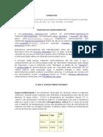 Pesquisa - Aula 25-02 (E_I)
